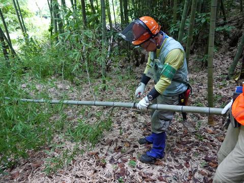「孟宗1本、真竹は2本」県民参加の森林づくり事業で違い明確_c0014967_1741952.jpg