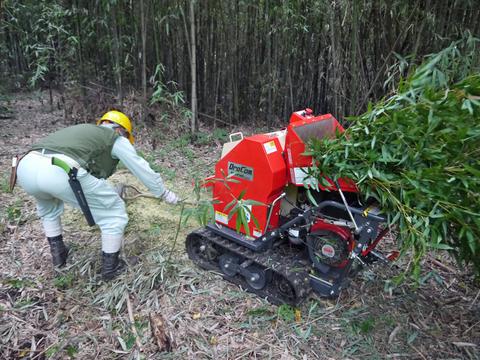 「孟宗1本、真竹は2本」県民参加の森林づくり事業で違い明確_c0014967_17421939.jpg