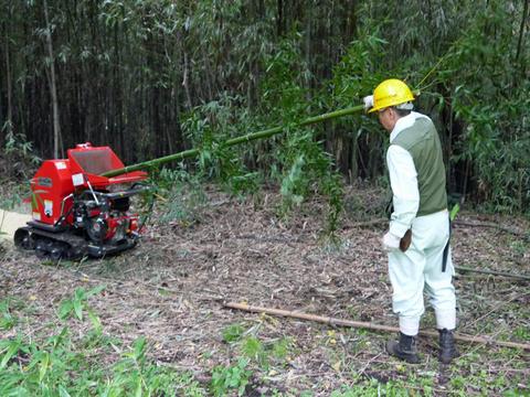 「孟宗1本、真竹は2本」県民参加の森林づくり事業で違い明確_c0014967_1742656.jpg