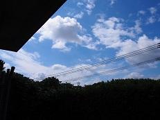 f0101679_73436.jpg