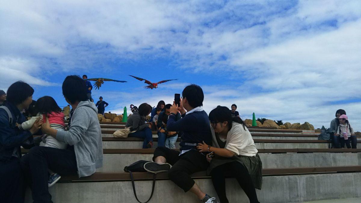 20周年を迎えて那須どうぶつ王国の進化がすごかった! : 那須高原ペンション通信(オーナー通信)