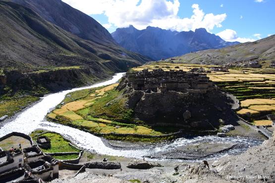 チベット・ヒマラヤの映画を見る会_e0111396_0595513.jpg