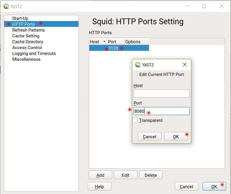 SUSE Linux 12 (SLES12 sp3) で YaST から Squid3 を導入、設定_a0056607_12270217.jpg