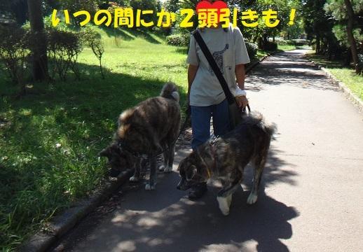 f0121712_14584483.jpg