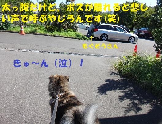 f0121712_15121030.jpg
