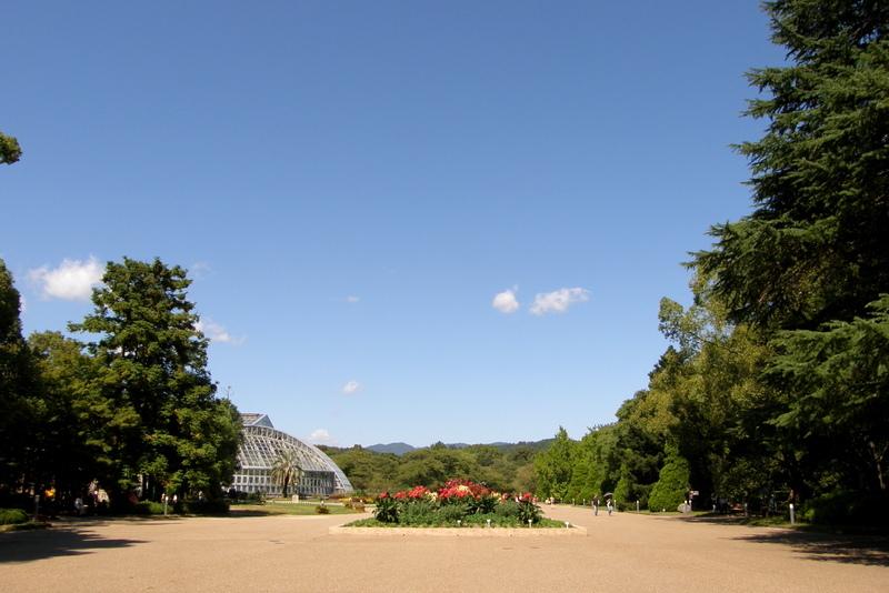 植物園_c0057390_23114090.jpg