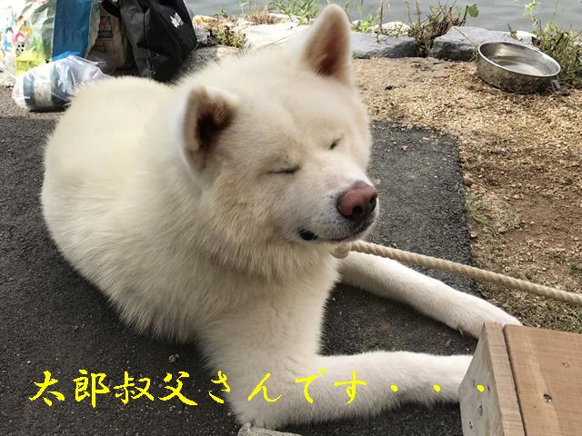 f0008935_03504425.jpg