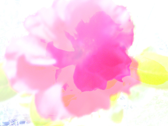 f0163764_14142551.jpg