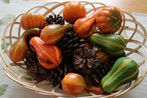 秋の花苗販売のお知らせ♪_e0086738_16260407.jpg