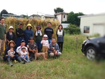 今年の稲刈り_e0010955_06291729.jpg