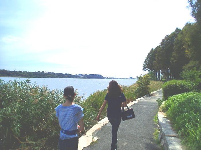 佐鳴湖さんぽ。_c0197578_11180650.jpg