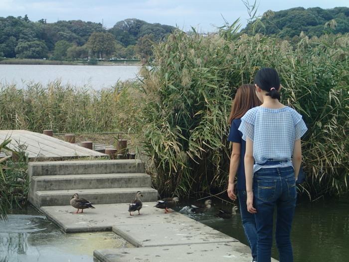 佐鳴湖さんぽ。_c0197578_11294503.jpg
