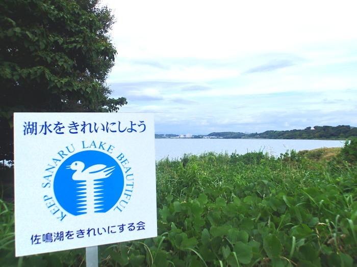 佐鳴湖さんぽ。_c0197578_11452620.jpg