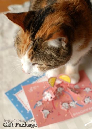 宮崎からのお誕生日便♪_b0253205_05202523.jpg