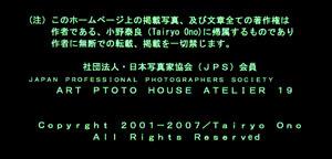 a0217029_14005052.jpg