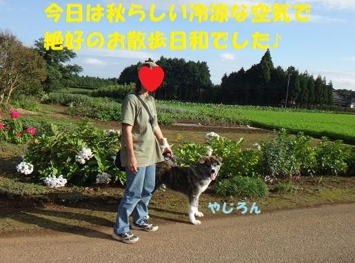 f0121712_22283240.jpg