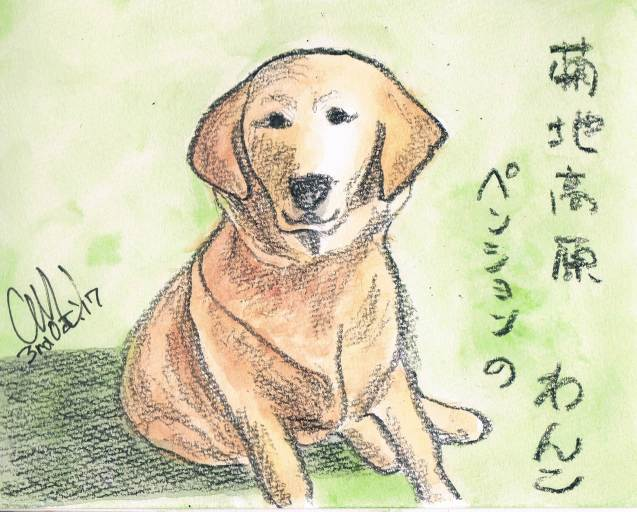 菊地高原のワンコ_e0232277_13425200.jpg