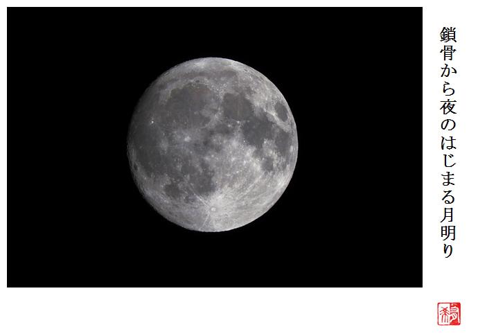 鎖骨から夜のはじまる月明り_a0248481_22072105.jpg