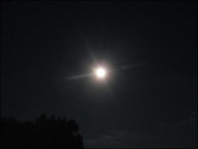 月灯り_b0300759_09032448.jpg