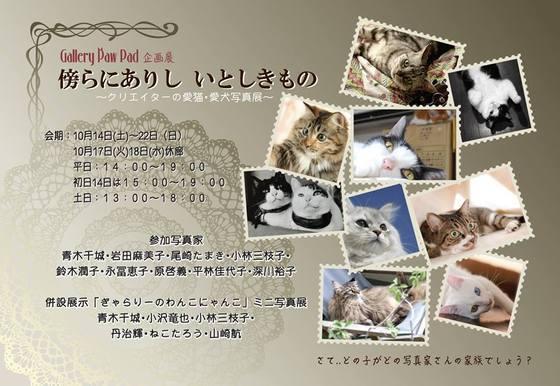 写真展 クリエイターズの猫(グループ展)_e0123176_20415919.jpeg