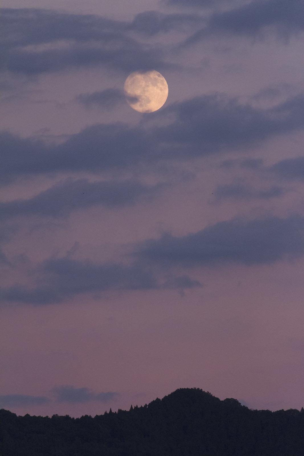 中秋の名月_e0174091_13433908.jpg
