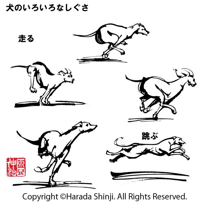 筆一本あれば人生は楽し イラストレーター原田伸治