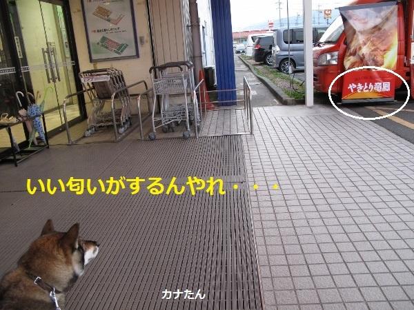 f0143123_11422480.jpg