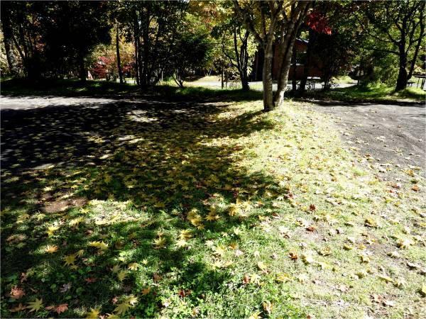 週末の天気と気温(10月1週目)_b0174425_11185169.jpg