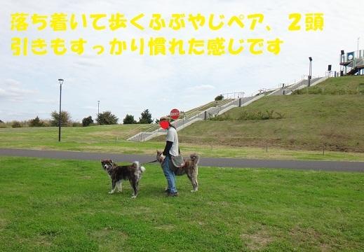f0121712_07250127.jpg