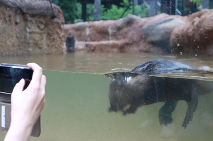 【東山動植物園】名古屋旅行 - 4 -_f0348831_07560521.jpg