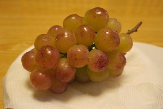 葡萄がいっぱい_c0134734_01274860.jpg