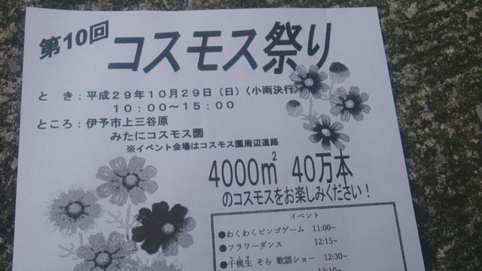 b0045259_20133189.jpg