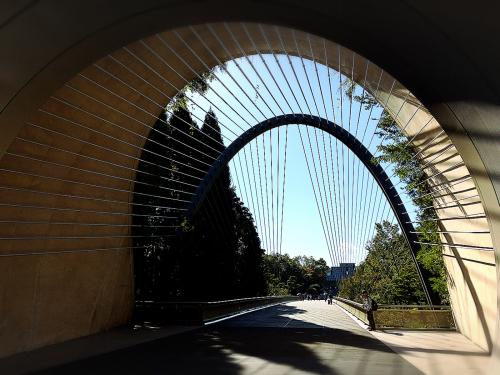 MIHO  MUSEUM_e0292546_08555460.jpg