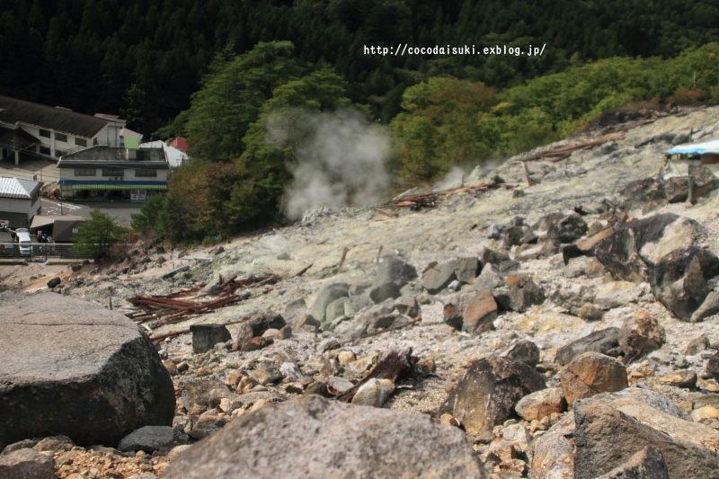 cocoと登山 * 2017 ♪ 〜 新湯富士 〜_d0367763_16483316.jpg