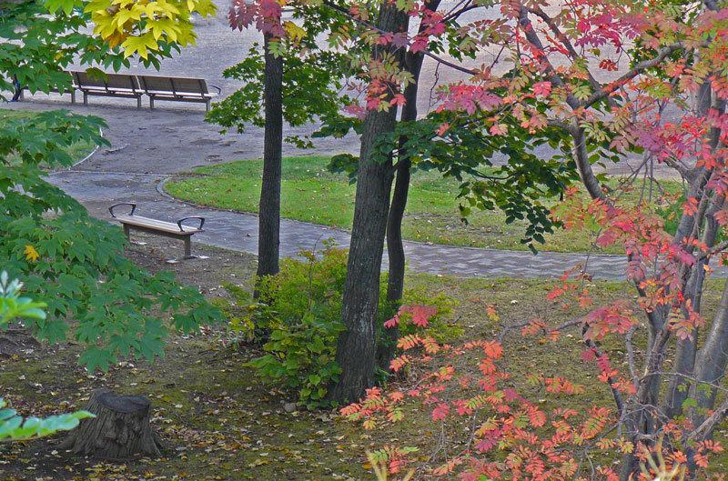 紅葉の季節_d0162994_08475850.jpg