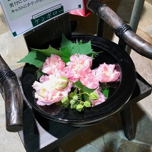 2017ケンボロー観月会 99回目_f0099102_16424551.jpg
