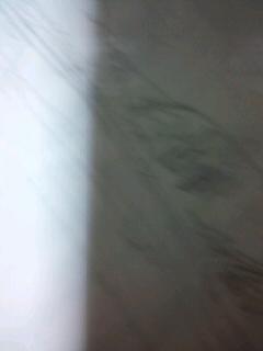b0136144_1431122.jpg