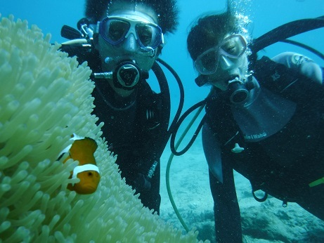 クマノミポイントで体験ダイビング!_a0156273_14511698.jpg