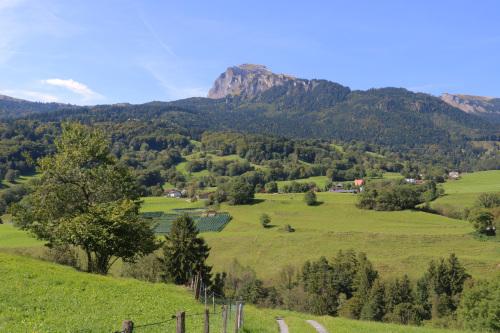 東スイス・西オーストリア研修:フォンタナス村の家 1外観_e0054299_14353008.jpg