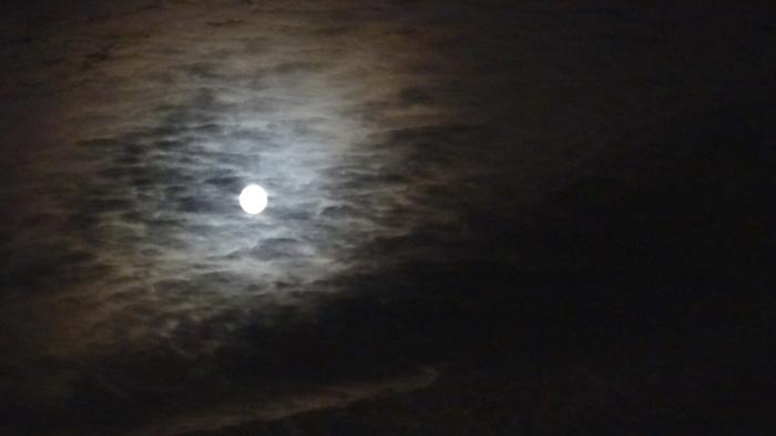 大将塀を作る!今頃ですが中秋の名月&十六夜の月_b0290816_12174364.jpg