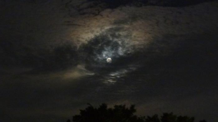 大将塀を作る!今頃ですが中秋の名月&十六夜の月_b0290816_12175368.jpg