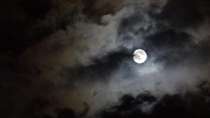 大将塀を作る!今頃ですが中秋の名月&十六夜の月_b0290816_12175861.jpg