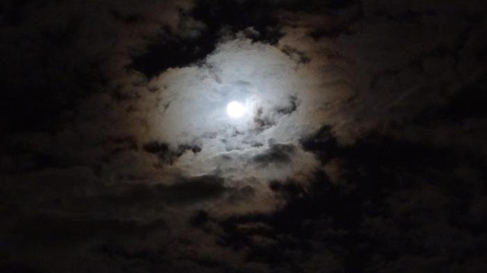 大将塀を作る!今頃ですが中秋の名月&十六夜の月_b0290816_12180292.jpg