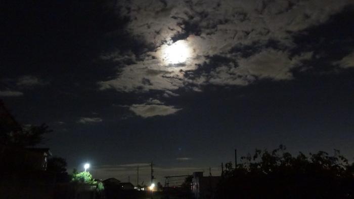 大将塀を作る!今頃ですが中秋の名月&十六夜の月_b0290816_12180741.jpg