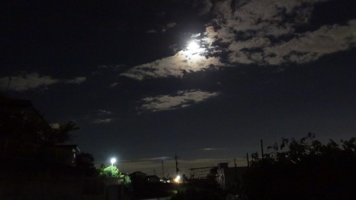大将塀を作る!今頃ですが中秋の名月&十六夜の月_b0290816_12181208.jpg
