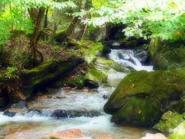 涼風滝めぐり26「天空の滝」と芦津渓_d0295818_14102511.jpg