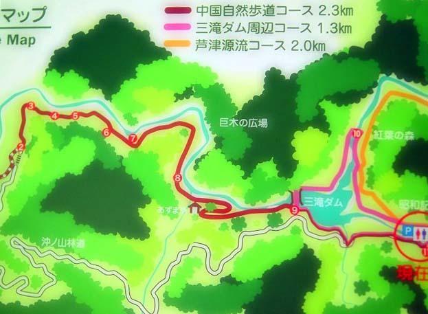 涼風滝めぐり26「天空の滝」と芦津渓_d0295818_14213493.jpg