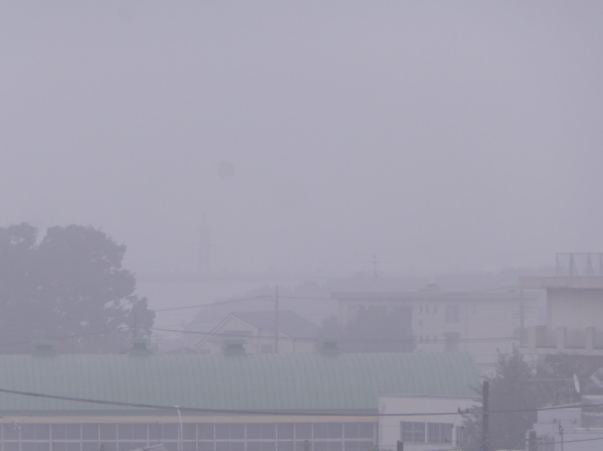 濃霧に出鼻をくじかれて_a0050728_10035760.jpeg
