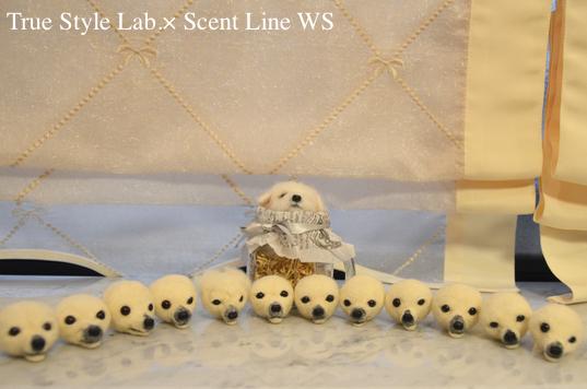 羊毛フェルトWS「マルチーズの子犬」レポート3_c0099133_06595878.jpg