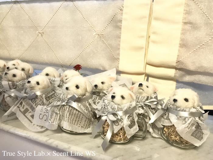 羊毛フェルトWS「マルチーズの子犬」レポート3_c0099133_07013020.jpg